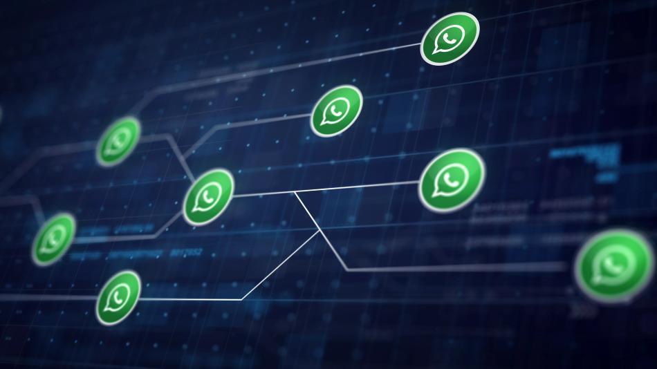 Pentingnya koneksi dengan pengguna whatsapp lain
